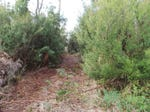 Lot 5 Gardiner Street, Squeaking Point, Tas 7307