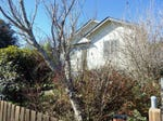 95 Hickory Street, Dorrigo, NSW 2453