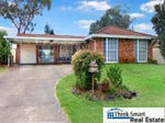 7 Starlight Place, St Clair, NSW 2759