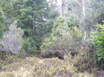 Lot 2 Cradle Mountain Road, Moina, Tas 7306