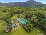 80 Cape Tribulation Road DIWAN, Cape Tribulation, Qld 4873