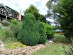 """Swallows Nest""/1358 Glenora Road, Plenty, Tas 7140"