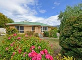 4 Saffron Drive, Kingston, Tas 7050