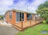 688 Ridgley Highway, Ridgley, Tas 7321