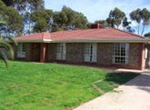 55 Williams Road, Two Wells, SA 5501