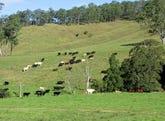 583 Wallaringa Road, Dungog, NSW 2420