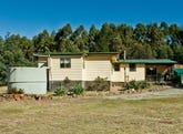 474 River Road, Reedy Marsh, Tas 7304