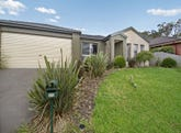 29 Donday Court, Pakenham, Vic 3810