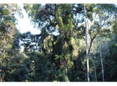 L81&82 Baxters Ridge Road, Gloucester, NSW 2422