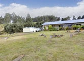 77 Vinces Saddle Road, Sandfly, Tas 7150