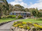 68 Direction Drive, Otago, Tas 7017