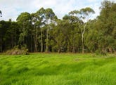 Lot 102 East Nannup Rd, Nannup, WA 6275
