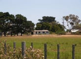 278 Waterhouse Road, Bridport, Tas 7262