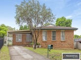48 Semillon Crescent, Eschol Park, NSW 2558