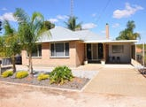 203 Playford Road, Waikerie, SA 5330