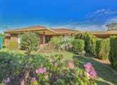 331 Walnut Avenue, Mildura, Vic 3500
