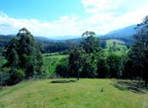 2727 Waterfall Way, Bellingen, NSW 2454