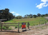 Lot 2 White Hut Road, Clare, SA 5453