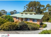 95 Suncoast Drive, Blackmans Bay, Tas 7052