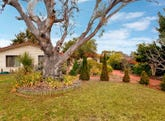 20 Goodsir Place, Chisholm, ACT 2905