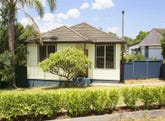 16 Cartwright Crescent, Lalor Park, NSW 2147