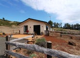 654 Spellmans Rd, Lower Wilmot, Tas 7310