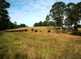 Lot 7 Tanna Road, Clarence Town, NSW 2321