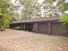 17 Wellard Close, Medowie, NSW 2318