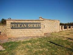'Pelican Shore Subdivision', Lake Wyangan, NSW 2680
