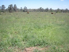 Hawthorne, Springsure, Qld 4722