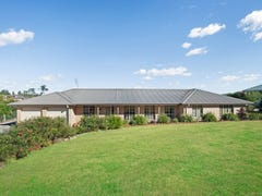 6 Golden Ash Drive, Aberglasslyn, NSW 2320