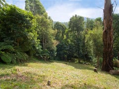 31 Wellington Road, Warburton, Vic 3799