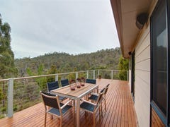 16 Wilderness Way, Travellers Rest, Tas 7250