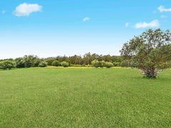 61 Nectarbrook Drive, Orangeville, NSW 2570