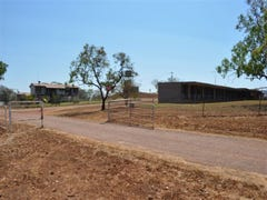 1435 Ringwood Road, Tortilla Flats, NT 0822