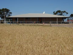 2235 Mt Damper Road, Minnipa, SA 5654