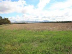 Sections 316 & 320 Hundred Of Goyder, South Hummocks, SA 5550