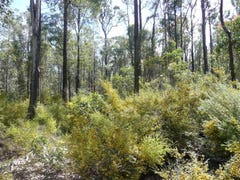 LOT 11189 MT Leewin Looop, Nannup, WA 6275