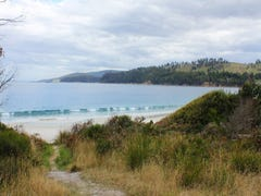 Big Roaring Beach Road, Surveyors Bay, Tas 7116
