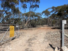 Allotment 20 Goondooloo Road, BOWHILL via, Mannum, SA 5238
