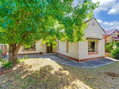 53 Yeronga Avenue, Kensington Park, SA 5068