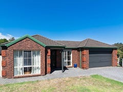 43 Michelmore Drive, Meadows, SA 5201