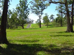 Lot 106 Spring Valley Way, Little Forest, NSW 2538