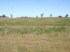 Lot 3,2909 Coolamon Road, Coolamon, NSW 2701