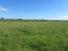 1132 Lower Coldsteam Road, Ulmarra, NSW 2462