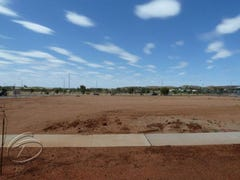 Lot 10003/1 Werlatye Court, Mount Johns, NT 0870
