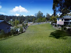 Lot 2 Lucas Ave, Bellingen, NSW 2454