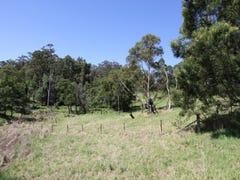 Lot 44 Cnr Princes Hwy & Tierney St, Yatte Yattah, NSW 2539