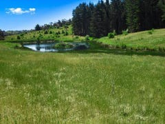 Lot 355 Run-o-Waters Drive, Goulburn, NSW 2580