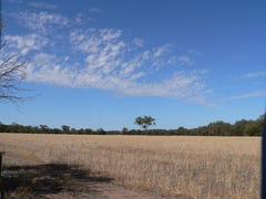 LOt 158/367 Burt Road, Woodanilling, WA 6316